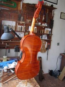 1-Dimitrov 7.8 violin_Back-001